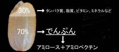 f:id:ogoesamurai:20181018090439p:plain