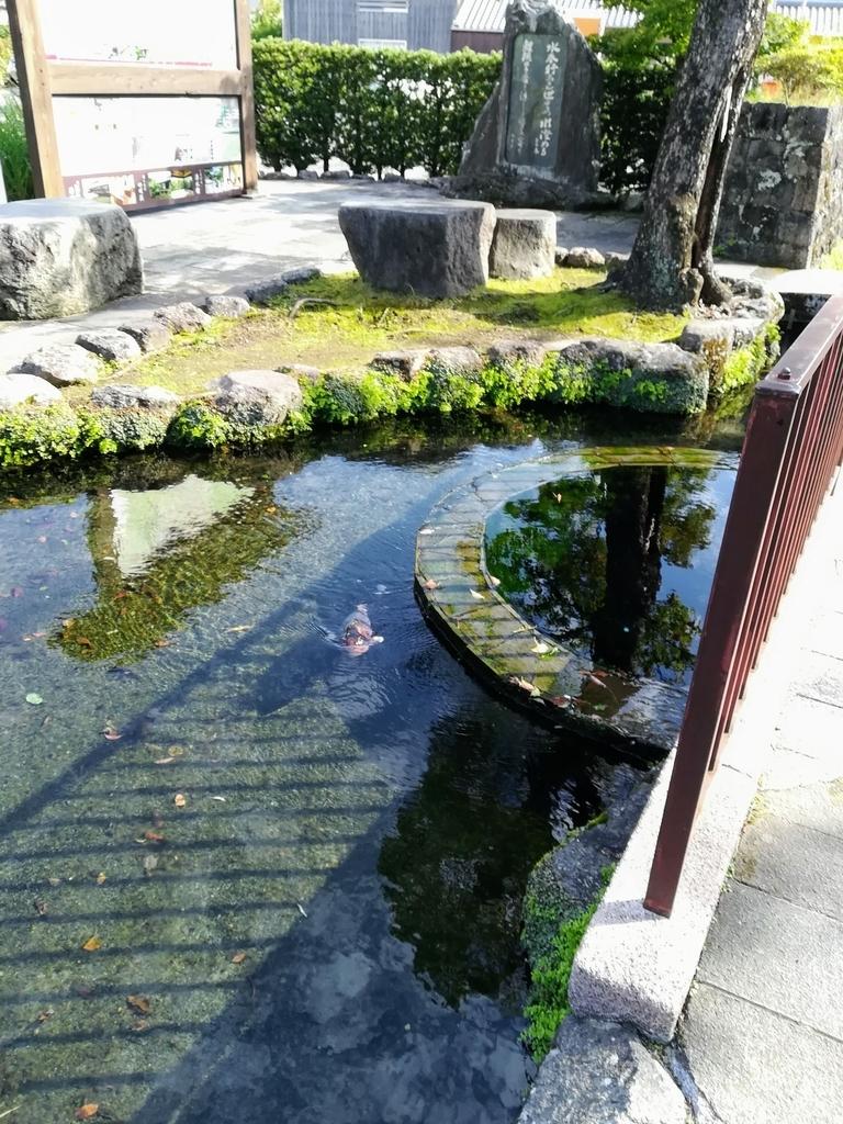 f:id:ogu-yuki-2-id:20181009213627j:plain
