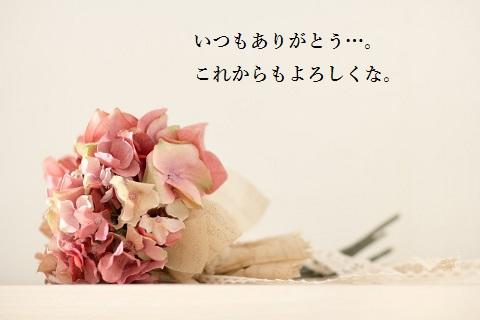 f:id:oh-miyatakuya:20170107234456j:plain