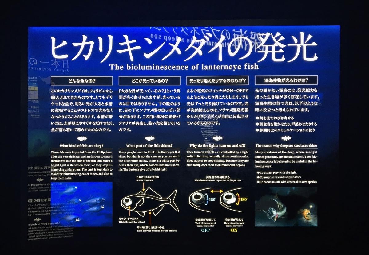 f:id:oh_ocean:20190520144056j:plain