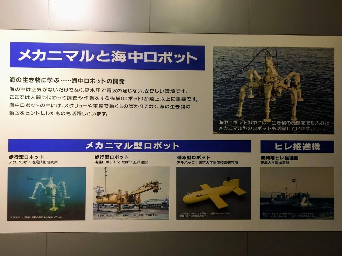 東海大学海洋科学博物館の見どころ