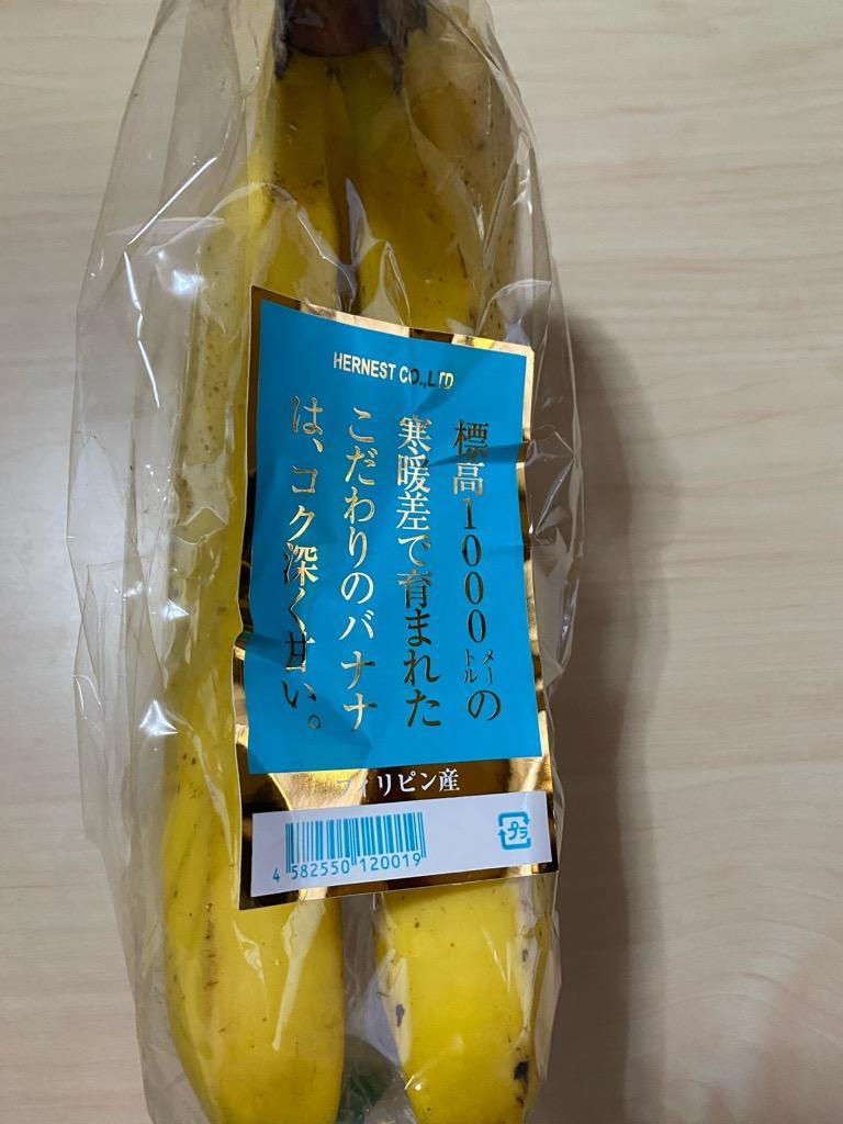 f:id:ohanaguzuguzu15:20200802145505j:plain