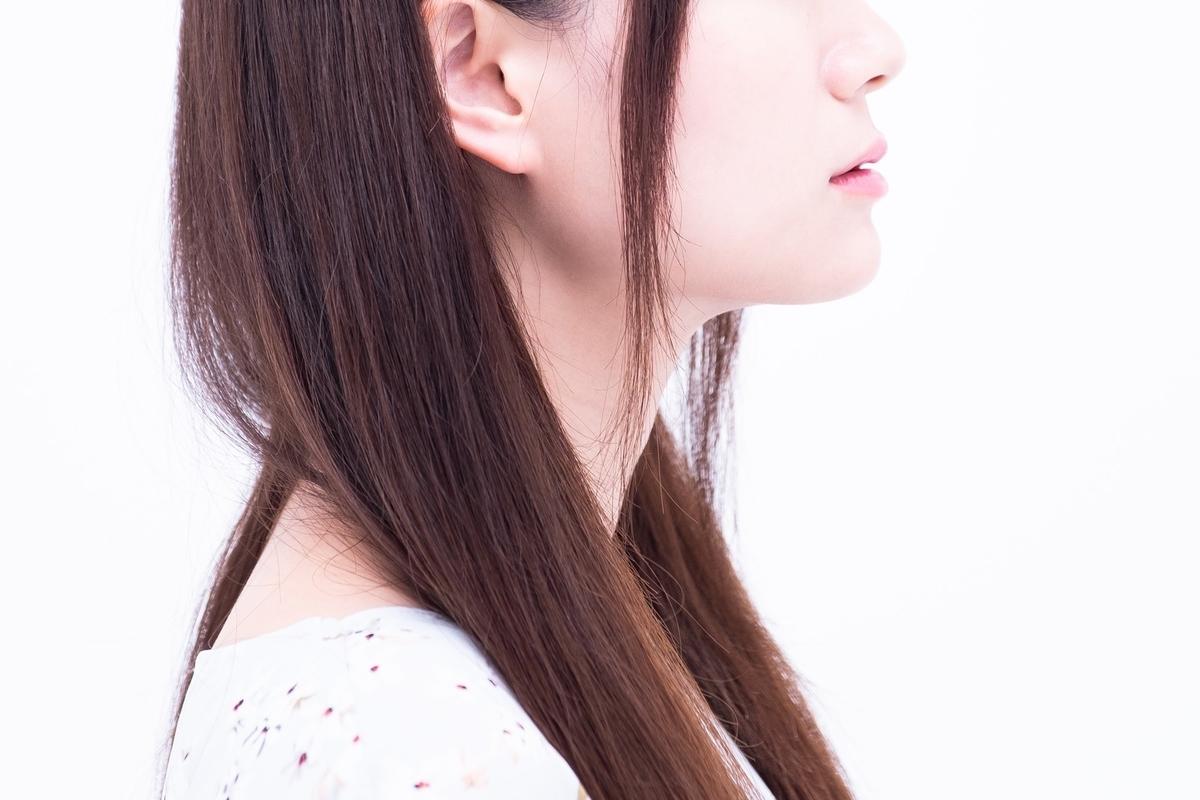 f:id:ohashi-no-hanashi:20201029140421j:plain