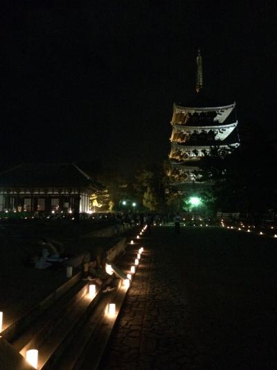 なら燈花会の興福寺の様子