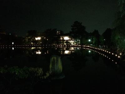 なら燈花会の猿沢池の様子
