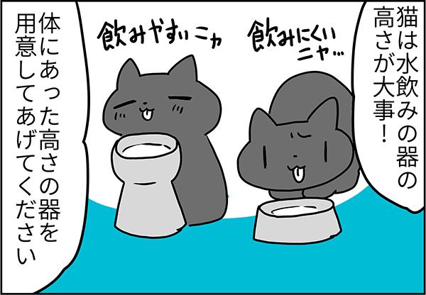 猫は水飲み器の高さが大事体にあった高さの器を用意してあげてください