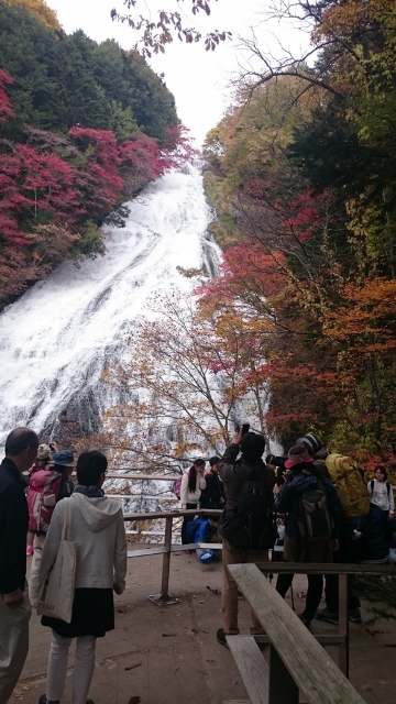 f:id:ohgashiwa:20161024064514j:plain