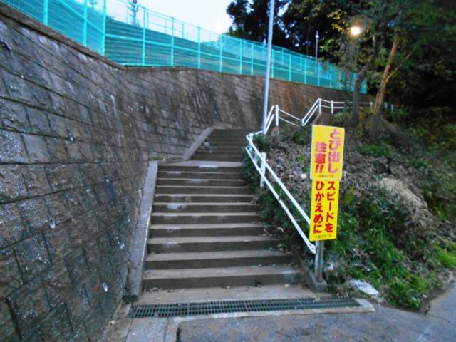 f:id:ohgashiwa:20161201072721j:plain