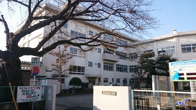 f:id:ohgashiwa:20170104095648j:plain