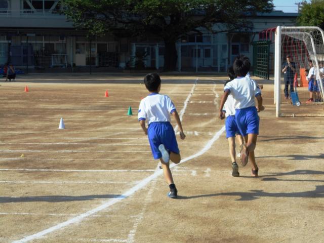 f:id:ohgashiwa:20170531062840j:plain