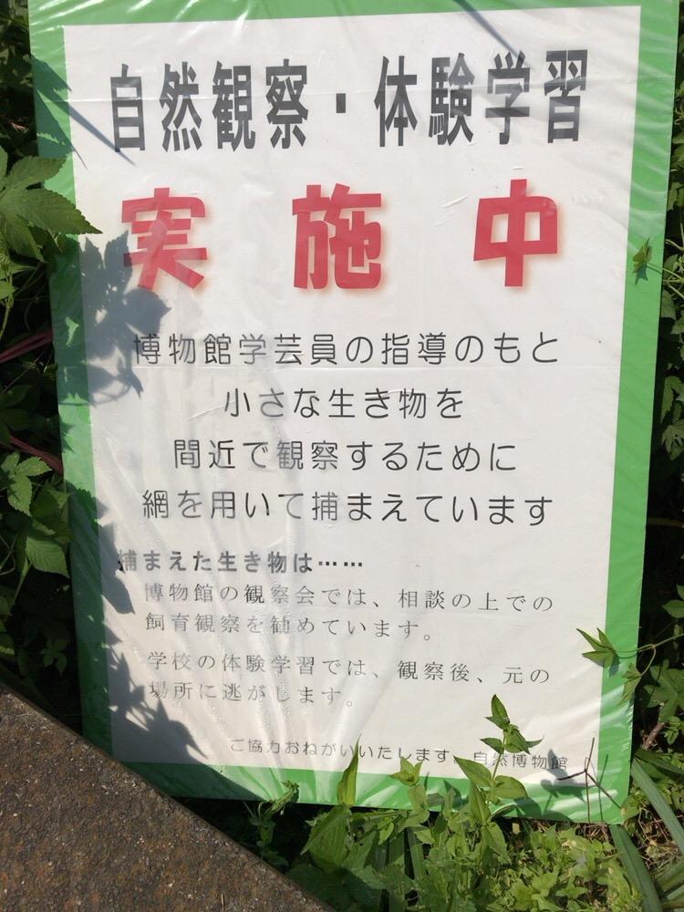 f:id:ohgashiwa:20170712103313j:plain