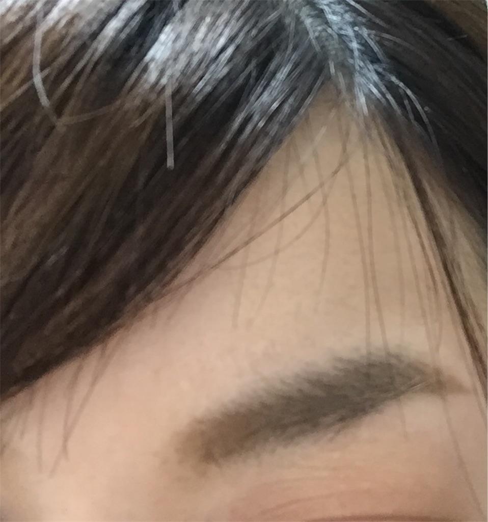 f:id:ohisama31:20190206114003j:image