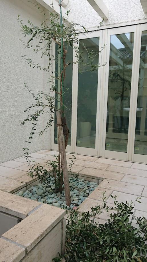 f:id:ohitorisama-daisuki:20201125185032j:plain