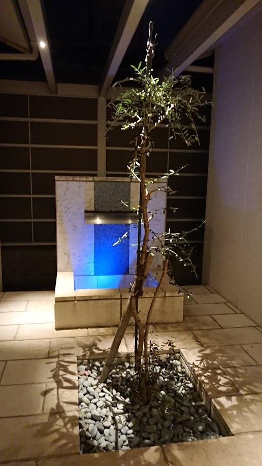f:id:ohitorisama-daisuki:20201125211903j:plain