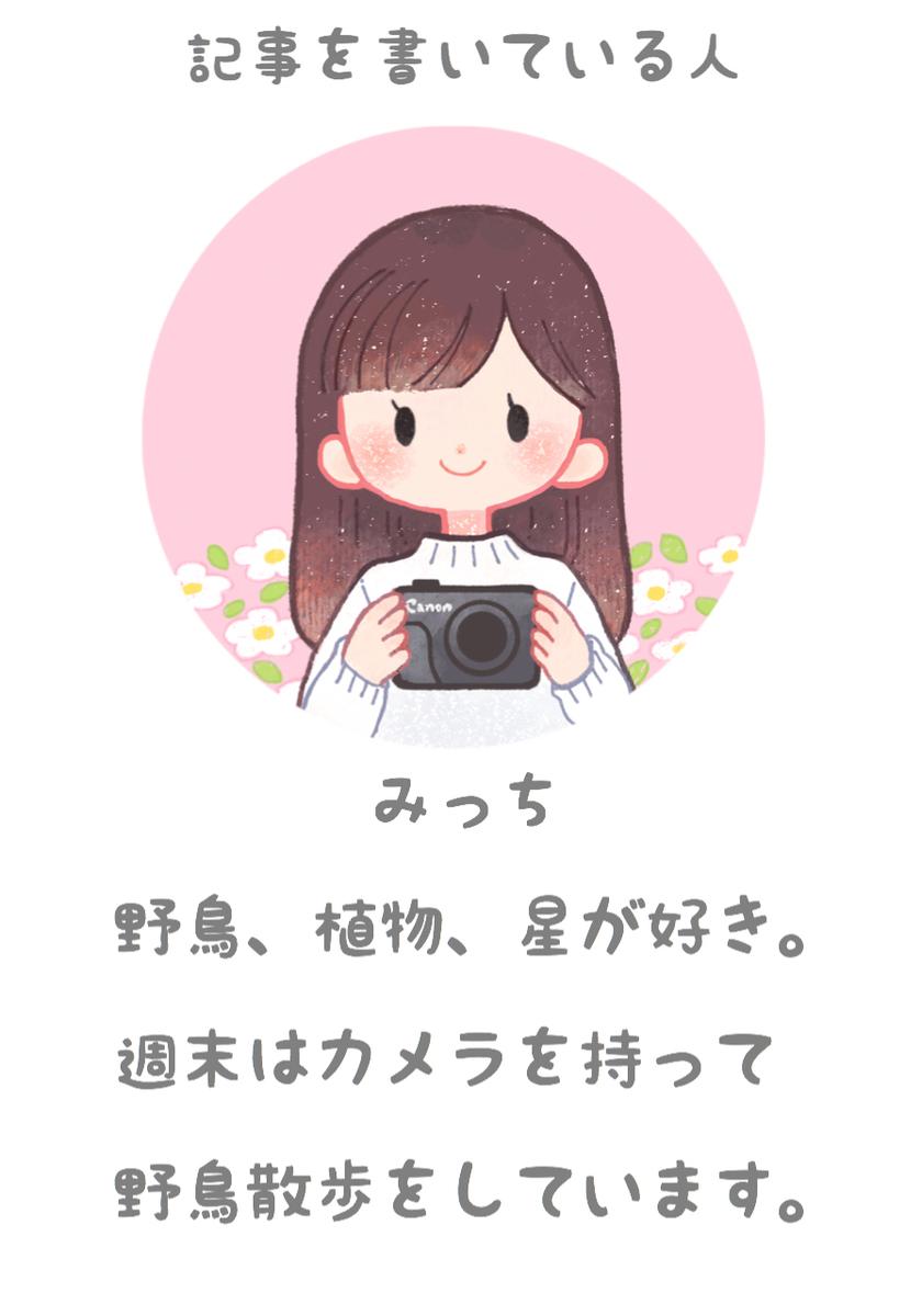 f:id:ohitorisama-enjoy:20200306111908j:plain