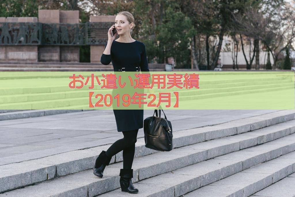 f:id:ohnamuzi:20190217114043j:plain