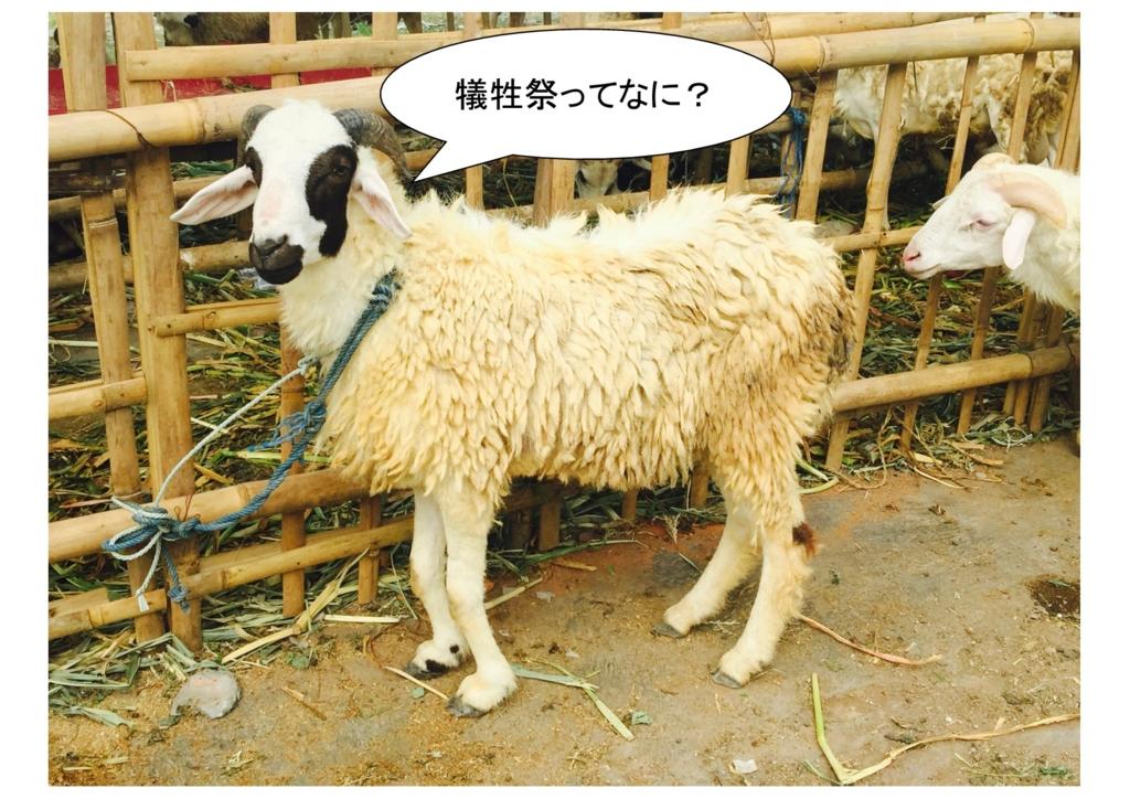 f:id:ohno-san:20160904115320j:plain
