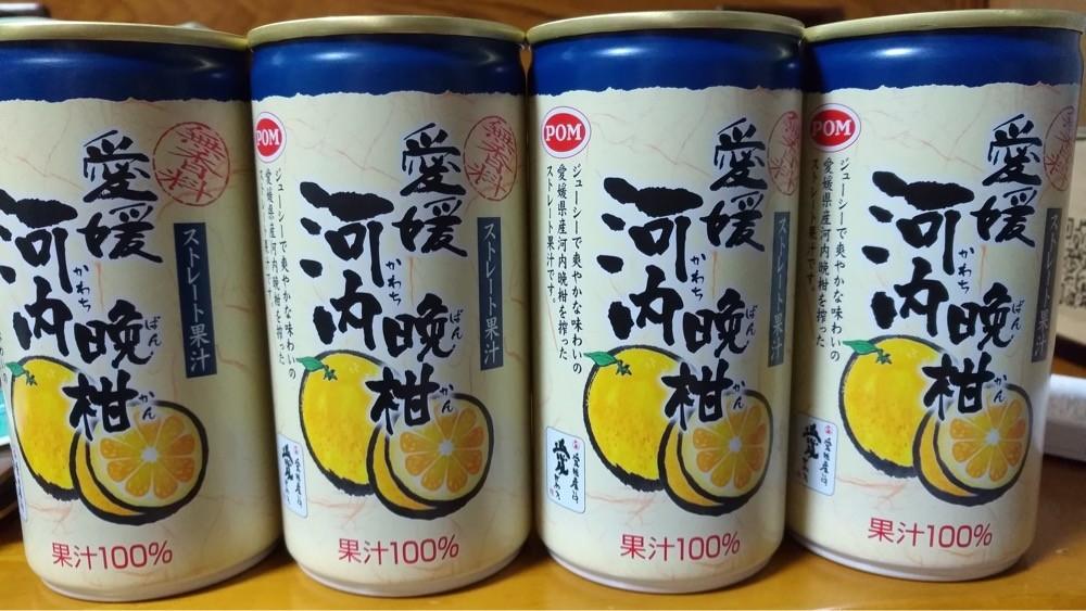 ストレート果汁 河内晩柑