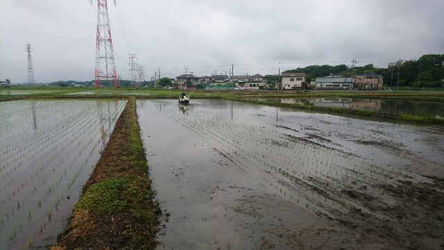 f:id:oikonoukanoyome:20170510155532j:image