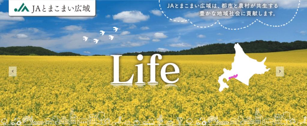 f:id:oikonoukanoyome:20181120231104p:plain