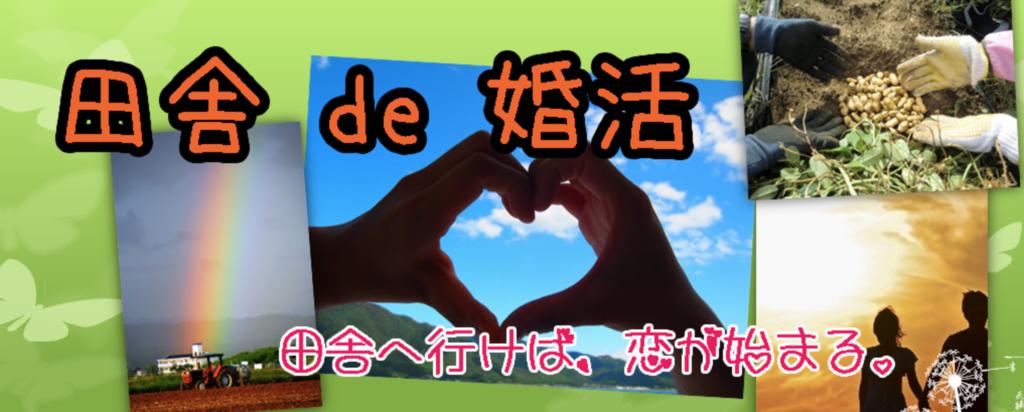 f:id:oikonoukanoyome:20190121005147p:plain