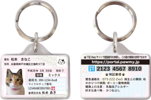 f:id:oimako0121:20170902205325p:plain