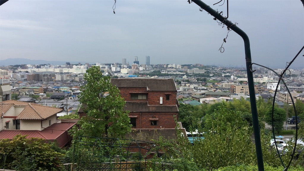f:id:oimo_denpun:20191104011552j:image