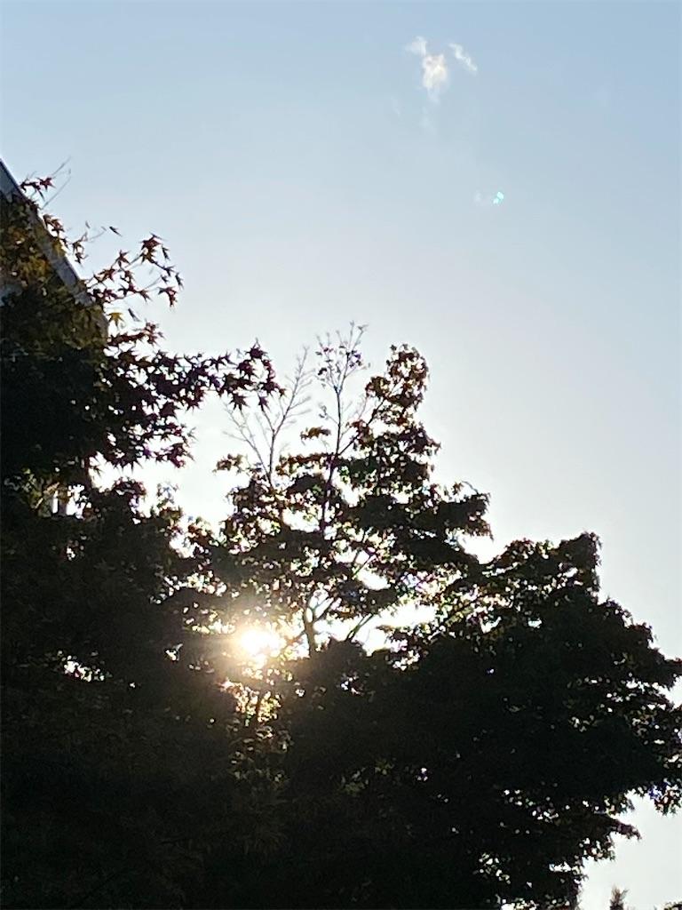 f:id:oimo_denpun:20201003021036j:image