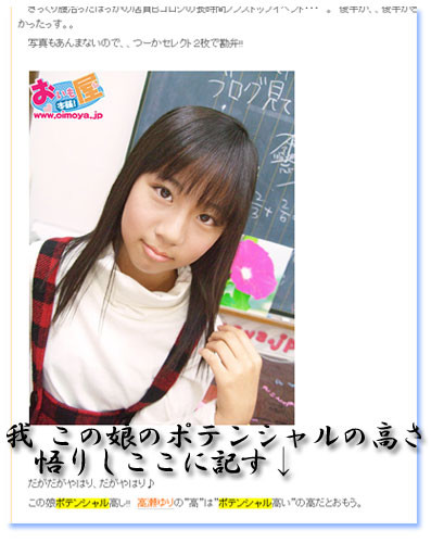 f:id:oimoya:20090202215139j:image
