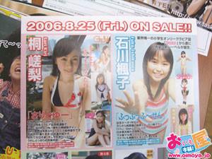 f:id:oimoya:20090206153349j:image