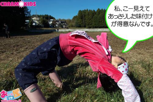 f:id:oimoya:20101201190433j:image