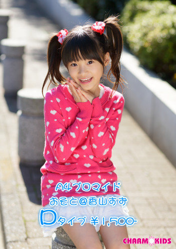 f:id:oimoya:20130205183738j:image