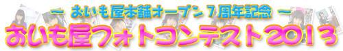 f:id:oimoya:20130607190246j:image