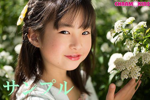 f:id:oimoya:20140401153747j:image