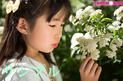 f:id:oimoya:20140401153748j:image