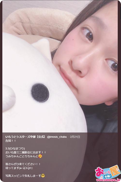 f:id:oimoya:20190225210305j:plain