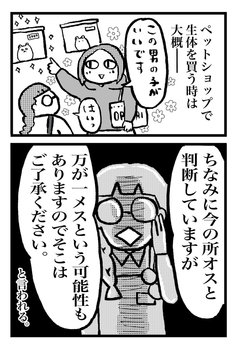 f:id:oinumaharuka:20190831210419j:plain