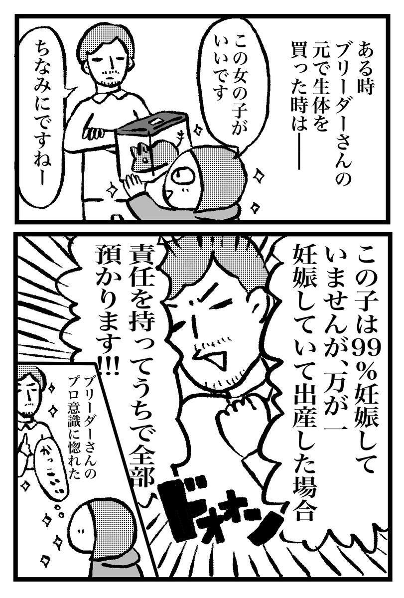 f:id:oinumaharuka:20190831210623j:plain
