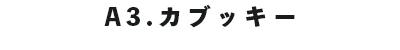 f:id:oishi-shogo:20190725135419j:plain