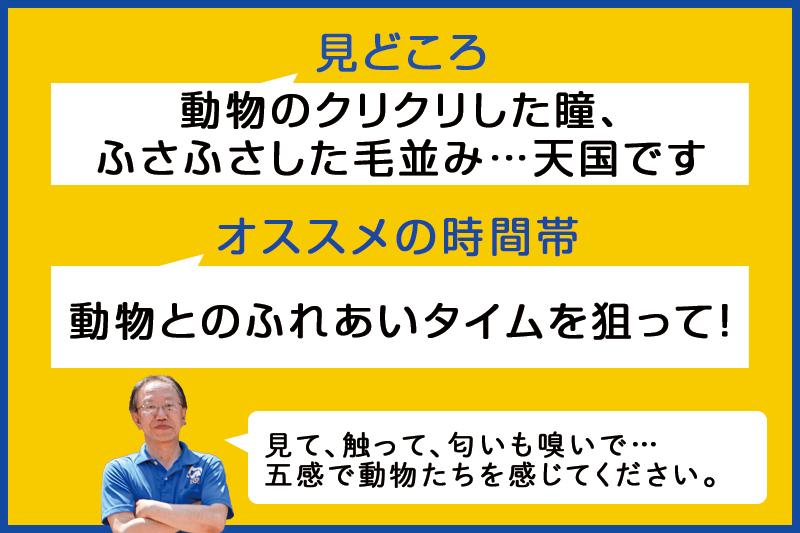 f:id:oishi-shogo:20200804192452j:plain