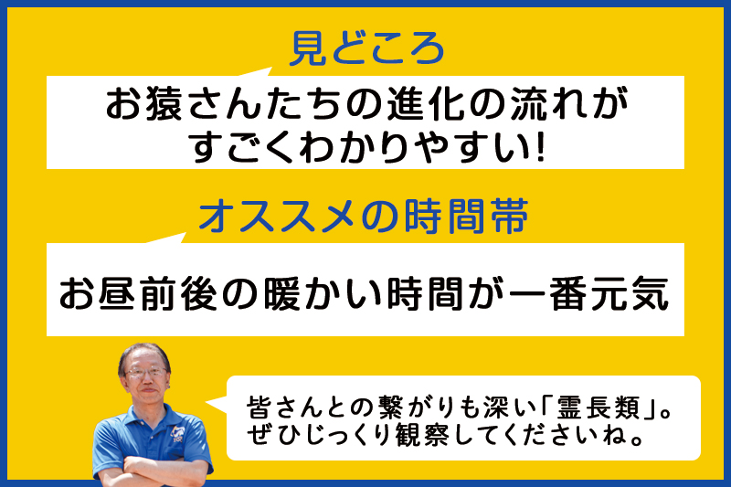 f:id:oishi-shogo:20200805145113j:plain