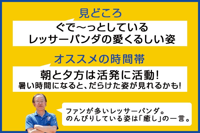 f:id:oishi-shogo:20200806153348j:plain