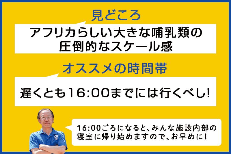 f:id:oishi-shogo:20200807184104j:plain