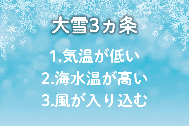 f:id:oishi-shogo:20201028161535j:plain