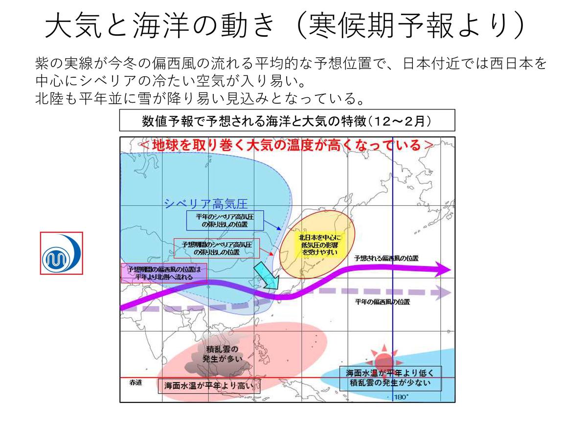 f:id:oishi-shogo:20201028165447j:plain