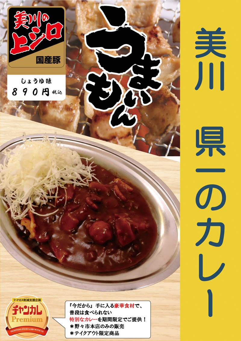 f:id:oishi-shogo:20210122150907j:plain