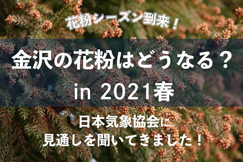 f:id:oishi-shogo:20210225115819j:plain