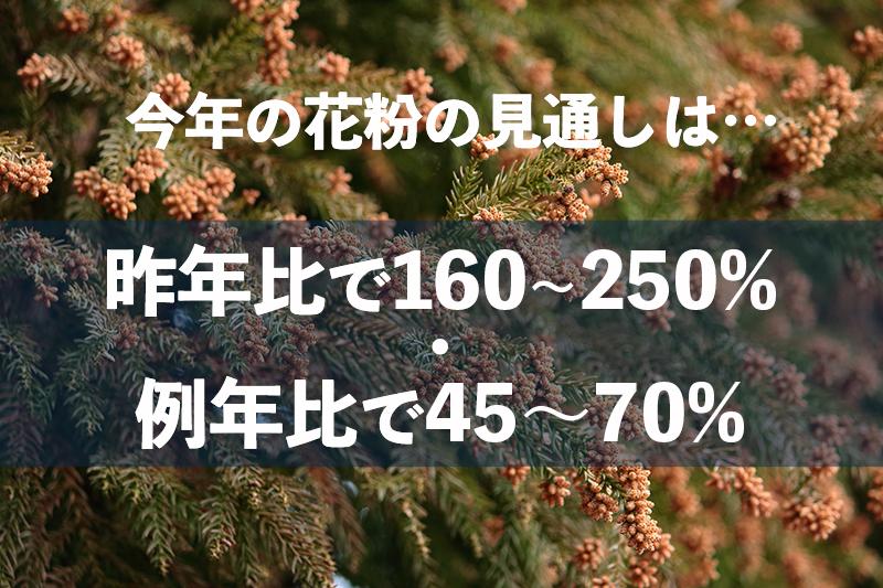 f:id:oishi-shogo:20210225142448j:plain