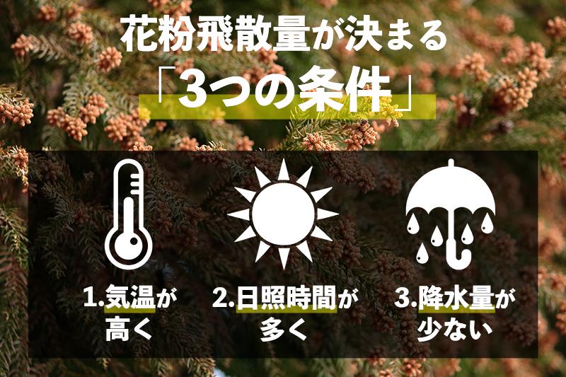 f:id:oishi-shogo:20210303155556j:plain