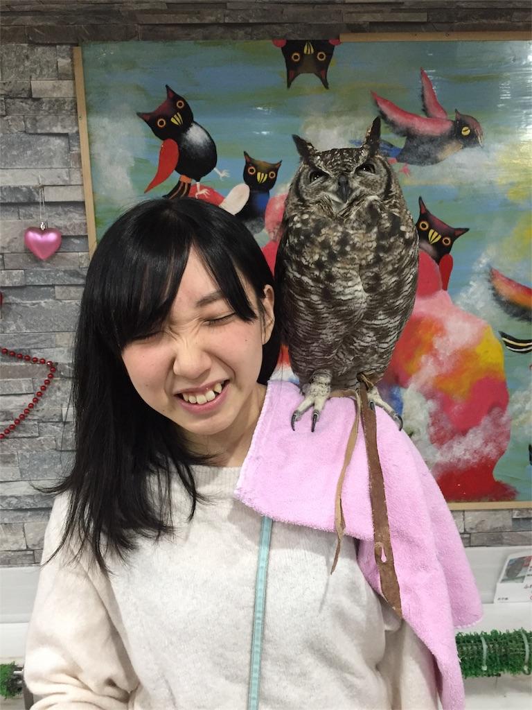 f:id:oishiikabegami:20180114213637j:image